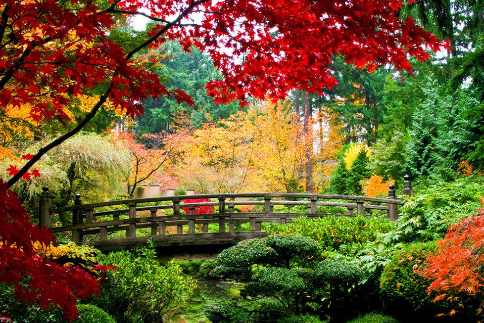 Užijte si všechny barvy podzimu a vydejte se na výlet do přírody
