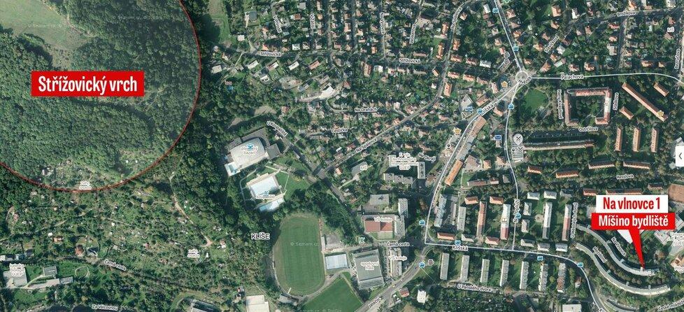 Střížovický vrch leží vedle ústecké čtvrti Klíše, v níž Míša s matkou bydlela.