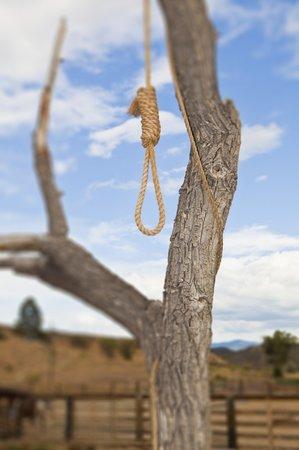Mladík se rozhodl spáchat sebevrařdu a oběsil se