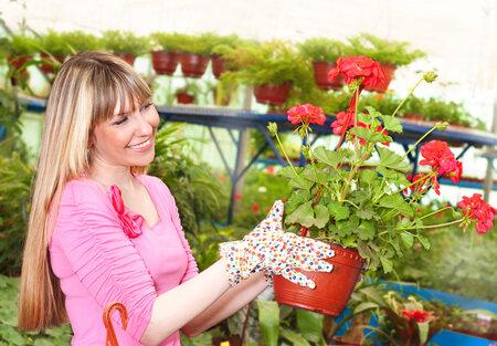 Ušetříte při nákupu květin a truhlíku zvlášť, nebo se vyplatí kupovat na netu? Počítejte s námi.