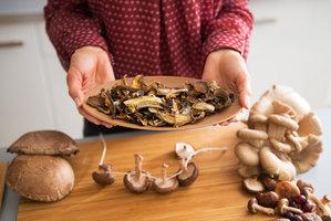 Léčivé houby: Poradí si s imunitou, stresem, záněty i kožními nemocemi