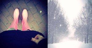 Jaro je odloženo: 14 dní bude pršet a chumelit, mokrý sníh zláme i větve