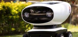 Nahradí nás stroje? Roboti budou rozvážet pizzu na Novém Zélandu