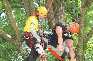 Soutěž v lezení po stromech: Nejlepší stromolezci Evropy se utkají ve Stromovce