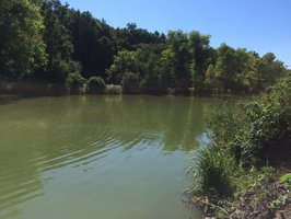 Stává se Praha rybníkářskou velmocí? Nové vodní plochy pomáhají v dobách sucha