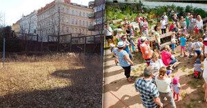 Z pustiny vytvořili na Vinohradech komunitní zahradu. Teď ji má zničit sportoviště
