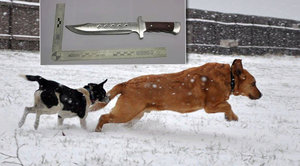 Muž (61) bodl nožem ženu v Modřanské rokli: Vadilo mu, že venčí psy bez vodítka