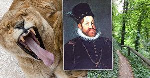 V Jelením příkopě na Hradě pobíhali lvi: Víme, komu patřili