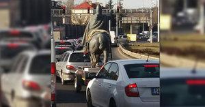 Svatého Václava na koni odvezli z Prahy. Netušíte, kam socha jela?