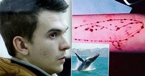 Kluk, který prý založil sebevražednou Modrou velrybu, je ve vězení: Vše podle něj začalo jinak