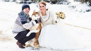Dokonalé svatební video: Nechali si ho natočit od svého pejska!