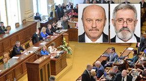 Poslanci vydali kolegy z ČSSD a KSČM k trestnímu stíhání. Jde o dotace