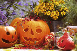 Halloween je za dveřmi! Vyřežte si strašáka z dýně