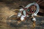 Indiánský horoskop na květen: Hadům budou chybět peníze, Sovám odpočinek