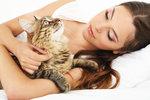 Příběh čtenářky Jarmily: Kočky mě přivedly na mizinu