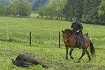 Václav Vydra si v seriálu zahrál rančera Halbhubera