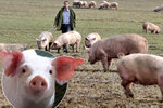 """Zelená nafta i pro """"živočicháře""""? ČSSD jde ve Sněmovně s kůží na trh"""
