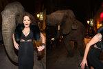 Obří dekolt Agáty Prachařové rozrušil slona! Musela před ním utéct