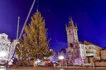 Staroměstské náměstí se přes noc změní: Vyroste na něm 22metrový vánoční smrk