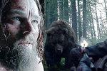 Leonarda DiCapria v novém filmu znásilní medvěd.