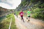 V Ďáblickém háji budou závodit běžci. Trať má od 30 metrů do 4 kilometrů