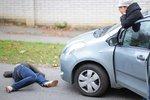 Na co máte nárok po dopravní nehodě: Viník nehody zaplatí i péči o mazlíčky