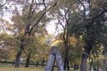 Tajemný Čertův kámen na Vyšehradě: Proč ho sem pekelník vzteky odhodil?