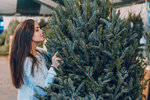 Letos, jako každý rok, je načase vybrat si ten pravý vánoční stromeček, který vám bude zpříjemňovat svátky nejen na pohled, ale i svou vůní. Tyto rady pomohou těm, kteří chtějí zumělého stromečku přejít na živý nebo těm, kteří chtějí změnit druh stromečku.