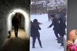 Kam se vydat v lednu v Praze? Na švihlou chůzi, svatební dny i do krytu