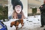 Posun v případu pohřešované Míši: Do Ústí přijel specialista z Německa