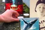 Denise (†16) zabila Modrá velryba: Kvůli hře na sociálních sítích skočil pod vlak