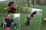 Psi soutěží v chytání frisbee: Naučí se to skoro každý
