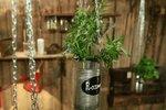 Vychytávky Ládi Hrušky: Závěsný květináč na bylinky