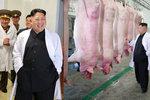 Vysmátý čuník ve vepříně: Veselý Kim Čong-un navštívil farmu, jeho lidé hladoví