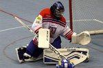 Světový hokejbal míří do Lovosic