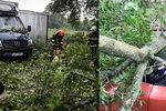 Spadlé stromy, výpadek elektřiny a 300 tisíc blesků: Českem se prohnala bouře