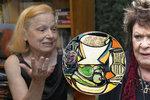 Historička o padělaných obrazech Bohdalové: Jsou to kvalitní obrazy...