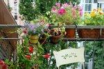Obyvatelé Letňan se předhánějí: Kdo má nejkrásnější zahrádku nebo balkon?