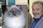 Šťastný Karel Gott: Našel se jeho zatoulaný kocour, jel si pro něj do útulku