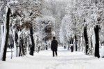 Leden přinese sníh i do nížin. Teploty spadnou z pěti stupňů k nule