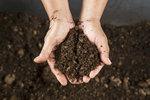 Kompost na jaře: Pozor na vlhkost a správné provzdušnění
