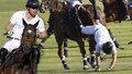 Jako švestka! Takhle princ Harry žuchnul z koně při zápase v pólu