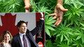 Kanada legalizuje rekreační užívání marihuany. Podle expertů získá desítky miliard