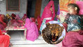 Holčičku v Indii sežral leopard: Zvíře ji vytáhlo přímo z postele