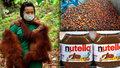 Supermarkety v Itálii bojkotují palmový olej, škodí prý zdraví. Co na to Česko?