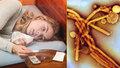 Chřipka ve středních Čechách zabila už čtyři lidi, počet nemocných roste