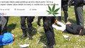 Nejhloupější dealer drog v Česku: Trávu nabízel na Facebooku!