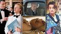 Který film získal Českého lva před 10 nebo 20 lety? PŘEHLED všech 24 vítězných snímků