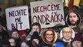 """Funkci """"mlátičky"""" Ondráčka chtějí zrzka z ODS, Babišův muž i Pirát. Volba bude tajná"""