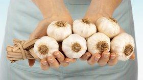Konec falšování sadbového česneku? Klamání zákazníků má utnout zákon